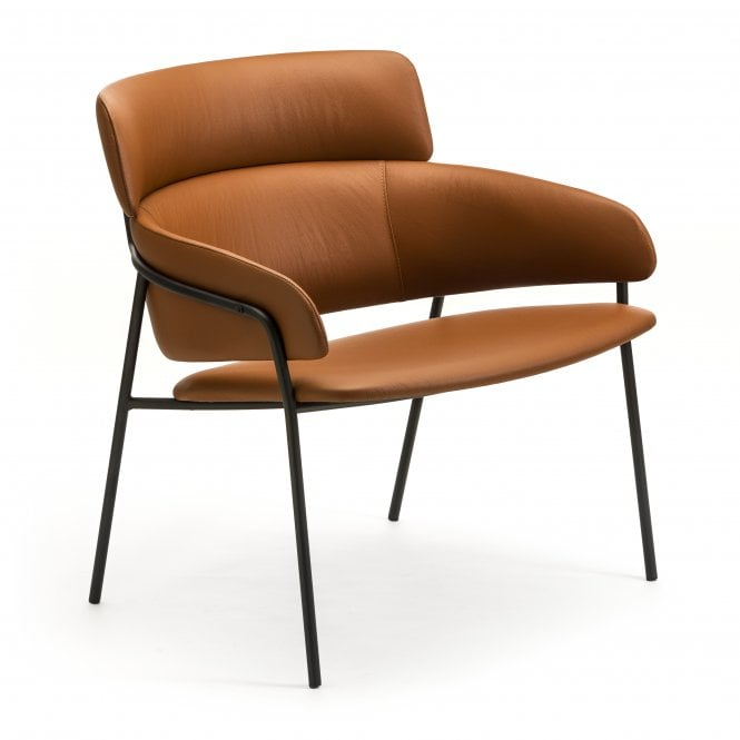 Conti Lounge Chair