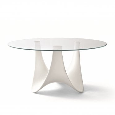 Coral Reef Round Table